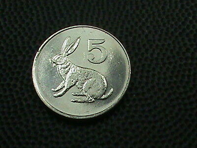 ZIMBABWE     5  Cents    1980    BRILLIANT  UNCIRCULATED   ,   RABBIT  -  HARE