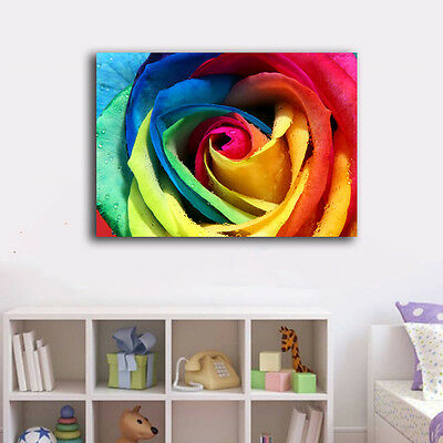 Rainbow Color Flower Stretched Canvas Print Framed Wall Art Home Decor Office