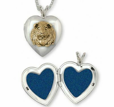 Guinea Pig Photo Locket Jewelry Silver And Gold Handmade Piggie Photo Locket GP1