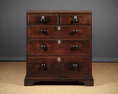 Small Antique Oak Chest of Drawers c.1820.
