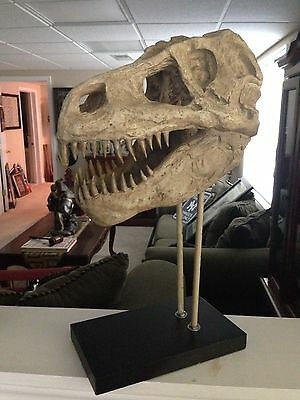 "T-Rex Skull Dinosaur Replica Museum Model 18""tall!!"