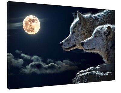 Animal - Fantasy Landscape White Wolf Canvas Picture Print Wall Art 2022