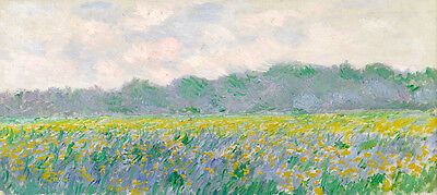 Field of Yellow Irises at Giverny by Claude Monet Giclee Fine Art Canvas Print