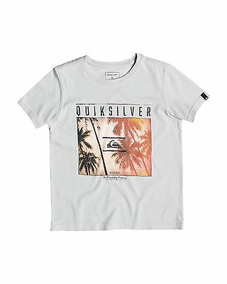 NEW QUIKSILVER™  Boys 2-7 Perfect Location T Shirt Boys Children Tops