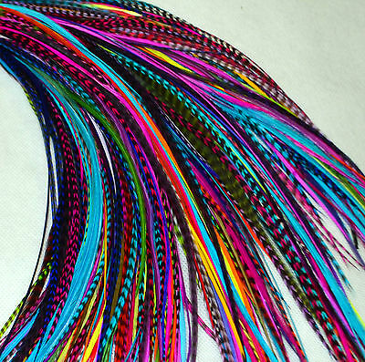 "Real Feather Hair Extensions Bulk 25 Mixed Colours 7-9"" UK Seller"