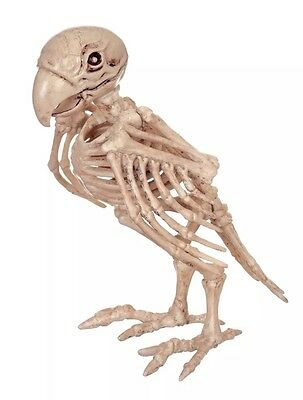 Crazy Bonez Skeleton Parrot New Halloween Decoration Pirate Ghost Ship Prop