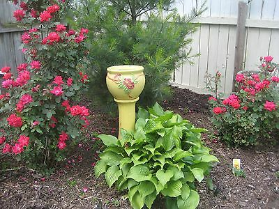 Yellow ROBINSON RANSBOTTOM RRP Ohio Jardiniere pedestal planter Pottery stand US