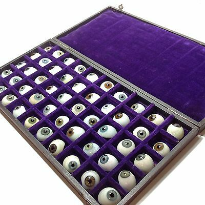 Collection of Vintage Prosthetic Glass Eyes in Display Case