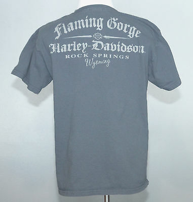 Harley-Davidson Racing T-shirt Gray, 2010, Flaming Gorge Rock Springs WY, Size L