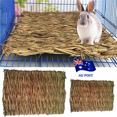 Small Animal Hamster Grass Chew Mat Breakers Toy Rabbit Rat Guinea Pig House EA