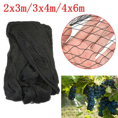 2x3m/3x4m/4x6m Protective Anti Bird Poultry Netting Mesh Hole Cover Garden Pond