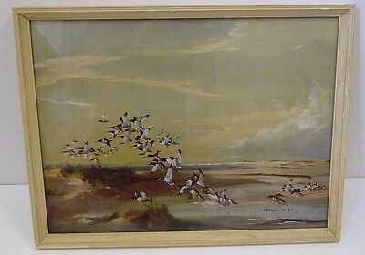 Vintage Framed Vernon Ward Print frightened oyster catchers picture art