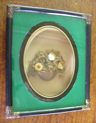 Antique 1864 Shadow Box Frame with Victorian Basket