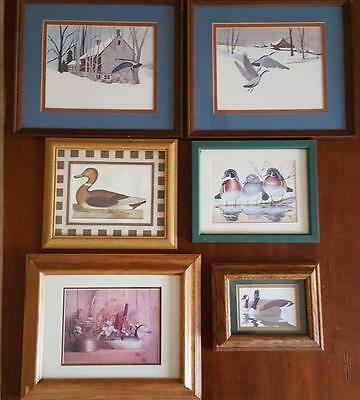 Duck / Geese Lot of 7 Framed and Matted Photos! Solid Wood Frames Misc Sizes