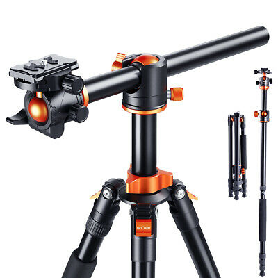 Professional TM2534T Travel Tripod Photo Stand with Ball Head for DSLR Camera