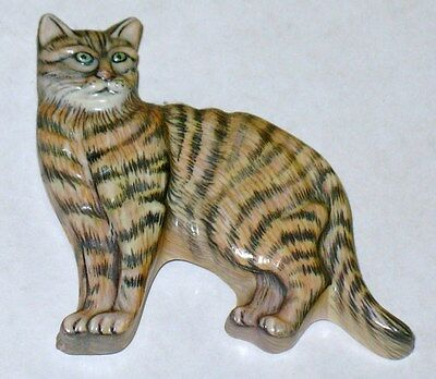 Cute Tabby  Cat Refrigerator Magnet Used