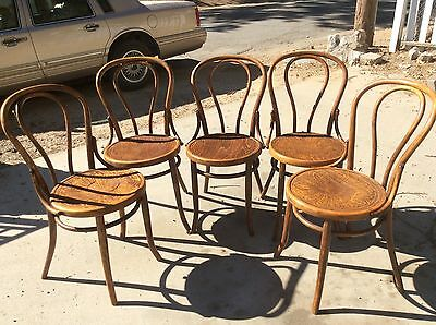 Antique 1920s Bentwood Thonet Chairs Made In Poland (5 Set)