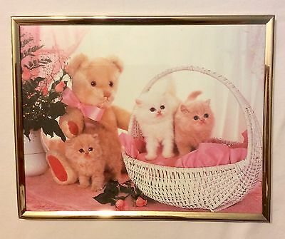 Framed Cat / Kitten Picture 8x10 Wall Hanging decor