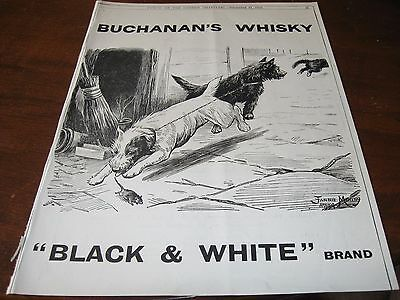 1910 Original AD ADVERTISING - BUCHANAN's WHISKEY w SCOTTIE DOG Rat TERRIER Dogs