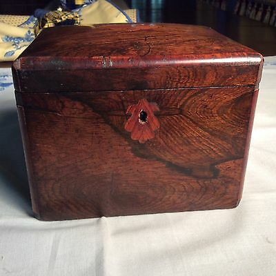 Tea caddy in rosewood. Antique