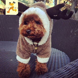 Winter Warm and Cozy Moose Hoodie Costume/Outfit/Clothes for Pet/Dog/Cat