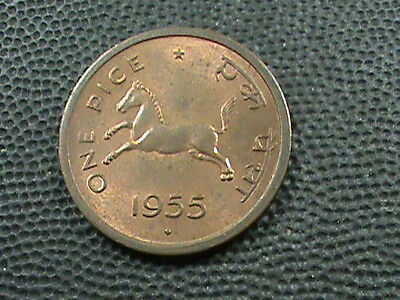 INDIA  -  BRITISH    1  Pice    1955  -  B    ,  HORSE  ,   ALMOST  UNCIRCULATED