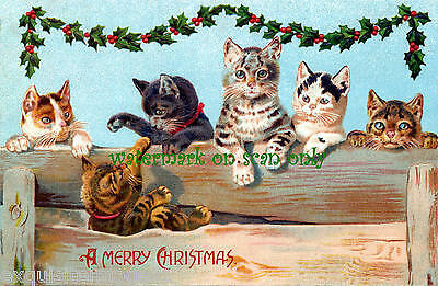 Antique Art-Assorted Christmas Cats on Fence~Holly Garland~NEW Large Note Cards