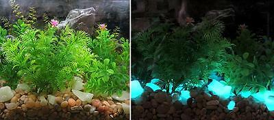 Large Aqua GLOW IN THE DARK Rubble ~ 4oz ~ Aquariums * Fish Tank Gravel ~ Stones