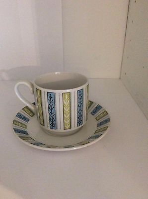 Mid Winter Staffordshire one cup and saucer