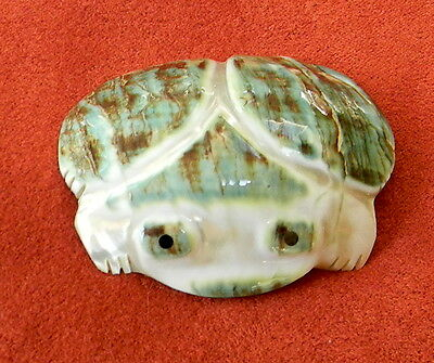Fetish Frog Green Snail Shell signed 2.25 in