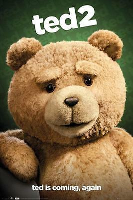 Ted 2 Movie 'Ted is Coming..again' Official Poster 61x91.5cm FP3786 New & Sealed