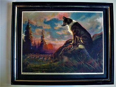 VINTAGE FRAMED COLLIE LITHOGRAPH Numbered PRINT A RELIABLE GUARDIAN Grt COLOR