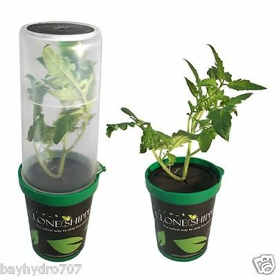 The Clone Shipper W/ LED Light Shipping Strains / Cuts Just Got Easy BAY HYDRO