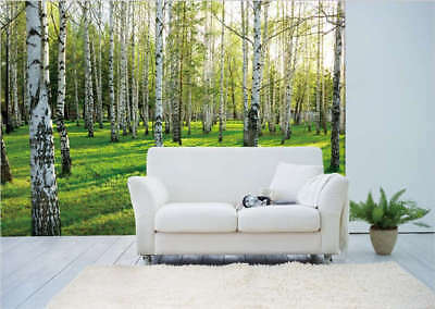 Birch Forest Summer Full Wall Mural Photo Wallpaper Printing 3D Decor Kids Home