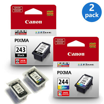 Genuine Canon PG-243 + CL-244 Ink Cartridges Black & Color Bulk Packaging