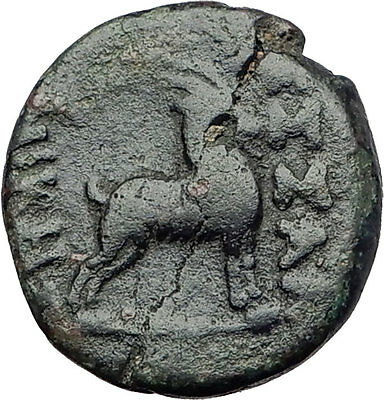 THESSALONICA Macedonia 100BC Authentic Ancient Greek Coin DIONYSUS & GOAT i63115