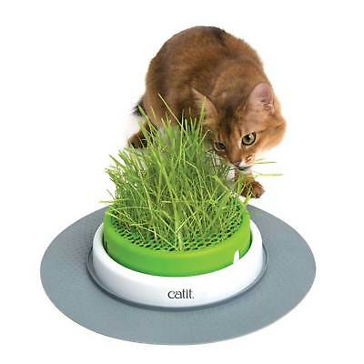 Catit Senses 2.0 Grass Catnip Planter Grow Your Own Cat Feline Catnip