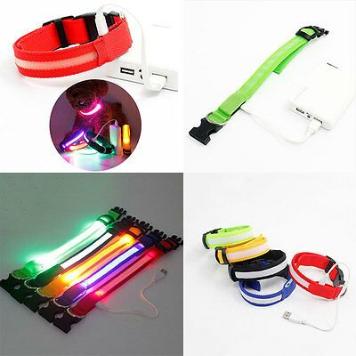 USB Chargeable LED Collar COLOR Light Up Pet Dog Cat Neck Night Flash Safety