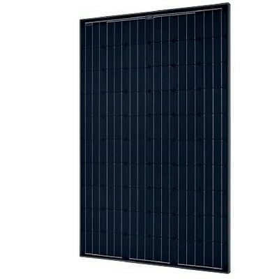 SolarWorld SW 285 Mono All Black Solar Panel, 285 Watts (Set of 10)