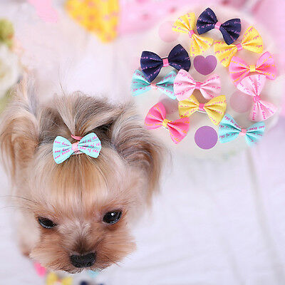 5pcs Pet Dog Hair Clips Bows Grooming Bowknot Puppy Hair Accessories Lot