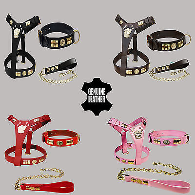 New Stafford Shire Staff Bull Terrier Leather Dog Df Harness, Collar & Lead Set