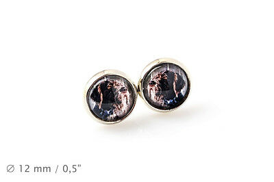 German Wirehaired Pointer.Pet in your ear. Earrings. Photojewelry. Handmade. USA