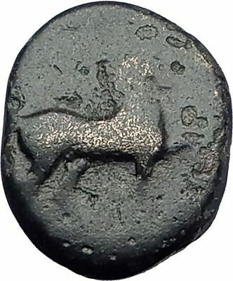 MYLASA in CARIA 210BC Rare Authentic Ancient Greek Coin HORSE & TRIDENT i63220