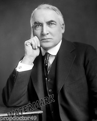 Historical Photograph of the 29th US President Warren G. Harding   8x10
