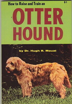 Vintage Otter Hound Book  Otter Hound How To Raise