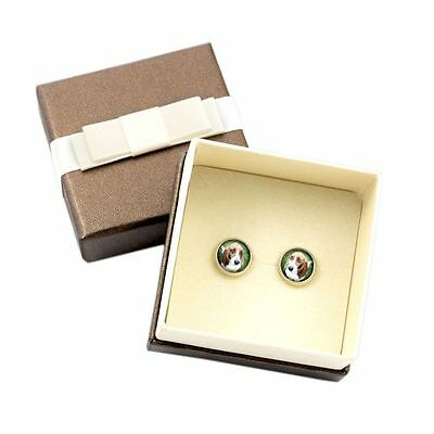 Basset Hound. Pet in your ear. Earrings with box. Photojewelry. Handmade. USA