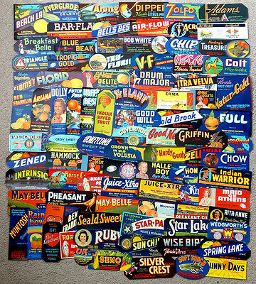 HUGE! Lot of 90+ Vintage FLORIDA Orange Citrus Fruit Crate Label / ALL DIFFERENT