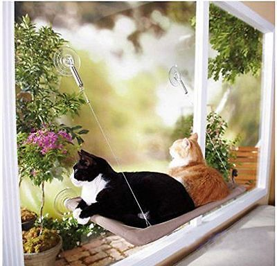 Sunshine Window Mounted Cat Bed Seat Sunny Hammock Beds Wall Perch Cushion New