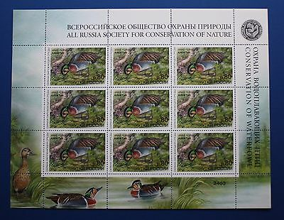 Russia (RD12) 2000 Conservation of Waterfowl Stamp Sheet (MNH)