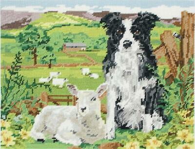 Border Collie and Lamb - Anchor Tapestry Kit - MR7004 - Wool Gift Canvas